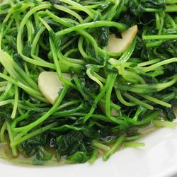 Sauteed Broad Bean Greens