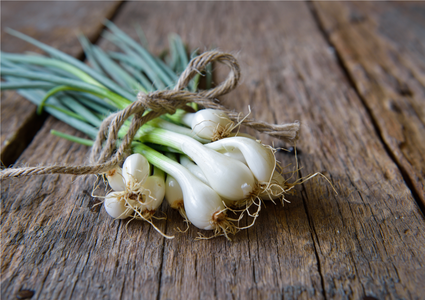Clean spring onions tied with a string