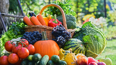 Fruit and vegetables have different portion sizes due to the difference in the nutrients they contain