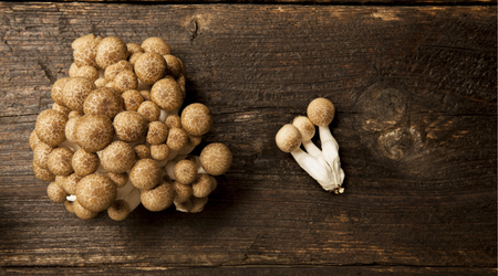 Brown beech mushrooms have a pronounced flavor