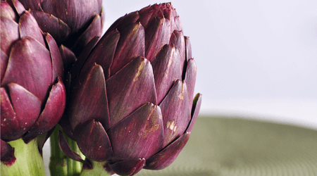Artichokes are buds of edible thistle