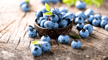Blueberries can grow as far north as the Arctic.