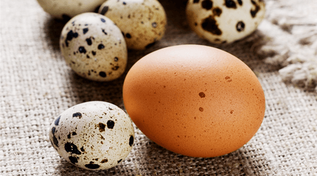 Hen that feed on grass and bugs outdoors produce eggs with a higher nutrition value.