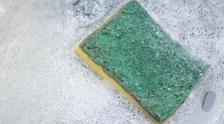 Replace your kitchen sponges regularly or sterilize them in your microwave