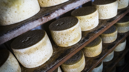 Cheese is older than some civilizations!