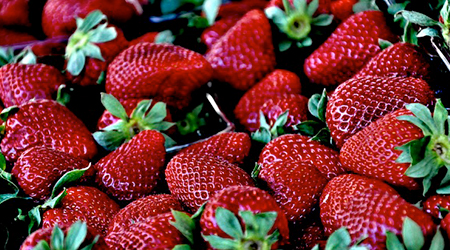 Eating strawberries on two days a week may be beneficial for your brain development