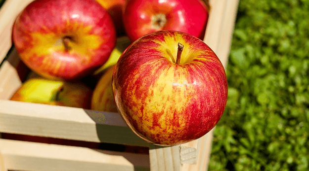 Apples are in season in september. Get recipes with apples