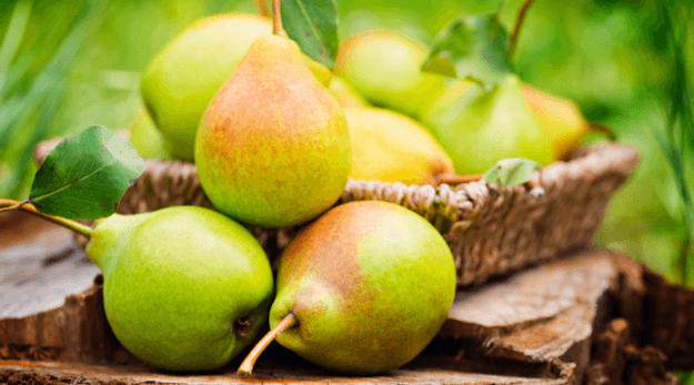 Pears are in season in September. Get recipes with pears
