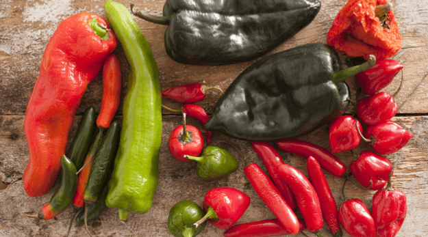 Peppers are in season in September. Get recipes with peppers